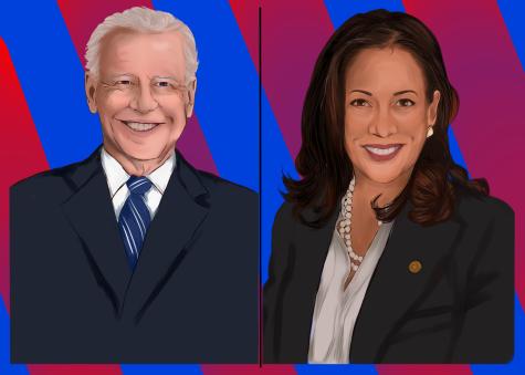 President-Elect Biden & VP-Elect Harris Art